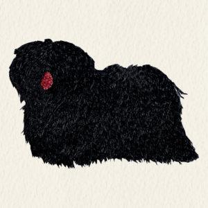 Puli - Fekete